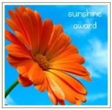 e1330-award2sunshine