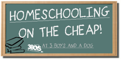 Homeschooling-on-the-cheap-1024x504