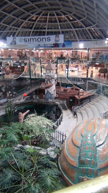 Sea lion show at Edmonton Mall