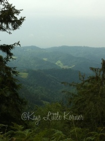 Die Schwarzwald