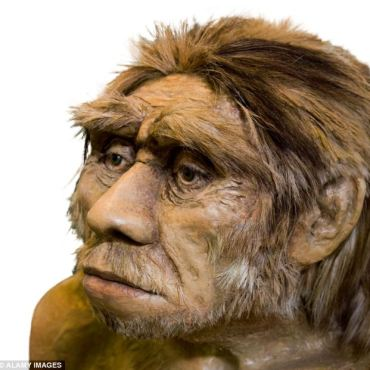 Early reconstruction